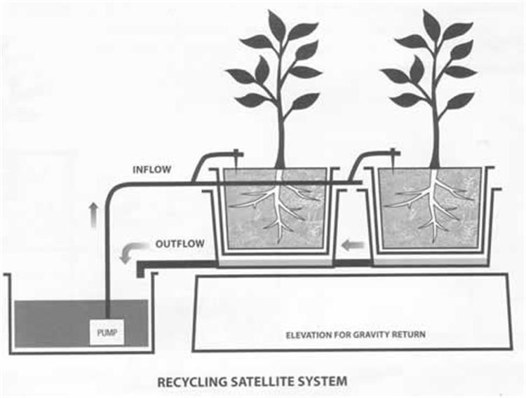 Aquaponics Growing Systems Hydroponics Dutch Bucket Buy