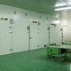 cold room for seafood Cold Storage for medicine cold storage room compressor YOYCOOL