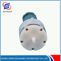 New Product 24V Electric Small Air Vacuum Pump For Household Appliances