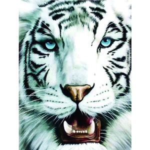 Home Decorative Wallpaper Lenticular Picture 3D Custom 3D Lenticular Printing of Handsome Tiger
