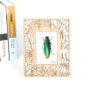 Organic Wooden Laser Engraving Art Wall Decoration Insect Ornament Picture Photo Frames