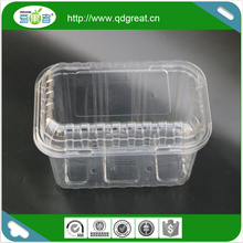 Popular Style Custom Clamshell Blister Fruit Packaging Box