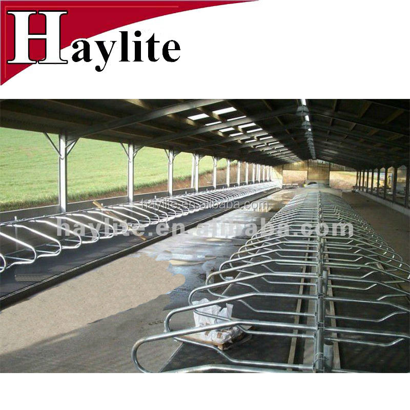 Hot dipped galvanized cattle freestalls dairy farm equipment