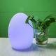 Colorful Rechargeable Battery Operated Cordless LED Table Lamps Egg Shaped Led Light