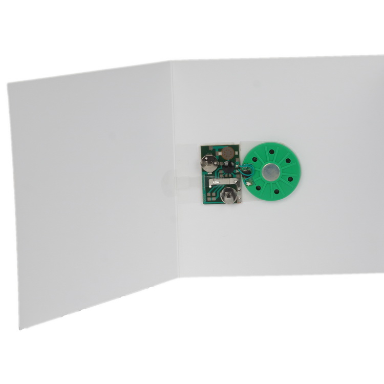 Music module chip 008