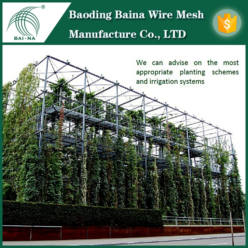 Stainless Steel Fence Wire Climbing Plants Support On Wall