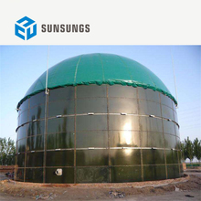 new energy biogas generation project