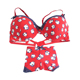 American style red special lovely big women beautiful brazil girl bra panty set