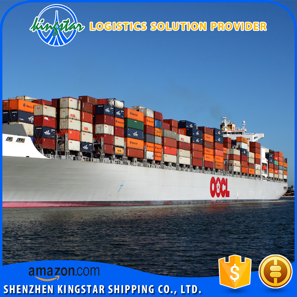 20ft 40ft Container Shipping Sea Freight from Shanghai/Tianjin/Ningbo/Guangzhou to Kawasaki Japan
