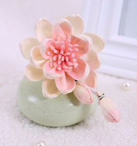 Lotus Sola wood Flowers for Reed Diffusers home Decoration gift set