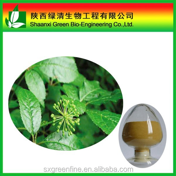 Wholesale high quality Siberian ginseng root extract