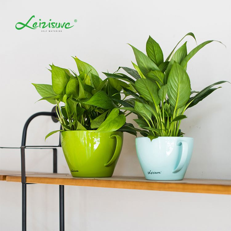 machine orchid plant pot self watering pot