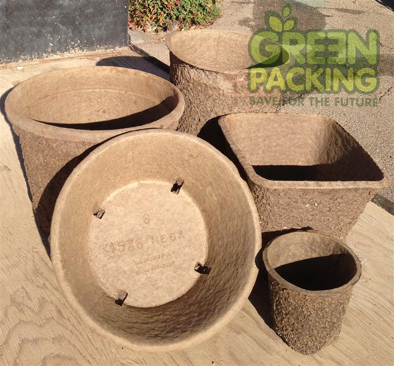 Greenpacking Pulp paper pot
