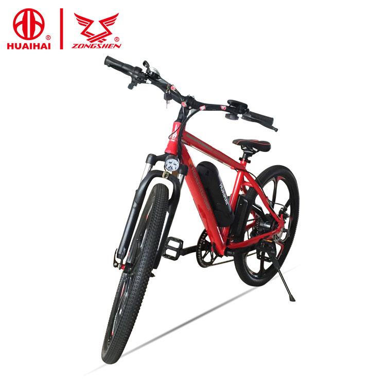 Prezzo basso 26 pollice acquistare a buon mercato bici elettrica della bicicletta 48V250W8AH 2018 cinese in cina prezzo