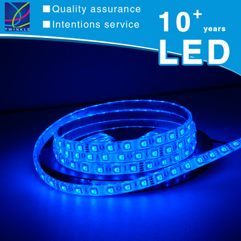 100m Cct 12v 24v Dmx Ws2812b Ws2813 Small 60d Programmable Smd 5050 Addressable Rgb Blue Color Led Light Strip