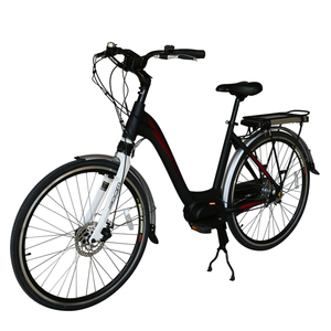 700C Central Motor E-bike With 36V 10Ah Lithium Battery