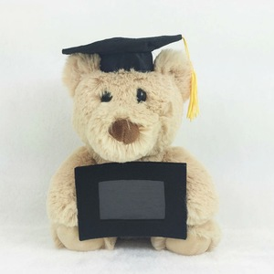 Hot Dr Teddy Bear Plush Toy With Doctoral Hat And Photo Frame Stuffed Graduation Bear/personalized photo teddy bear