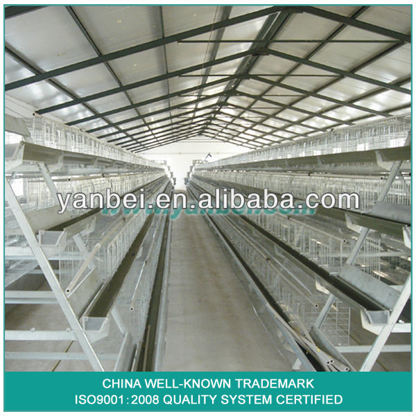 9WCD 4 Tiers A-Type Hot Galvanized Layer Chicken Coop