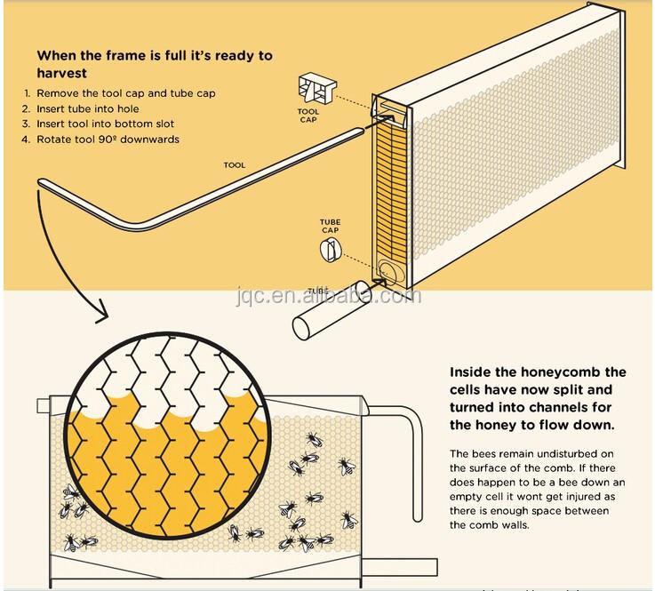 2017 new food grade plastic beehive flowing frames. Black Bedroom Furniture Sets. Home Design Ideas