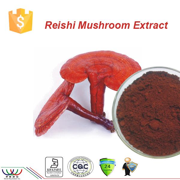 Anti-cancer Cure All Cgmp Fda Kosher Haccp 6% Triterpenes 30%  Polysaccharides Ganoderma Lucidum Spore Reishi Powder - Buy Reishi  Powder,Ganoderma