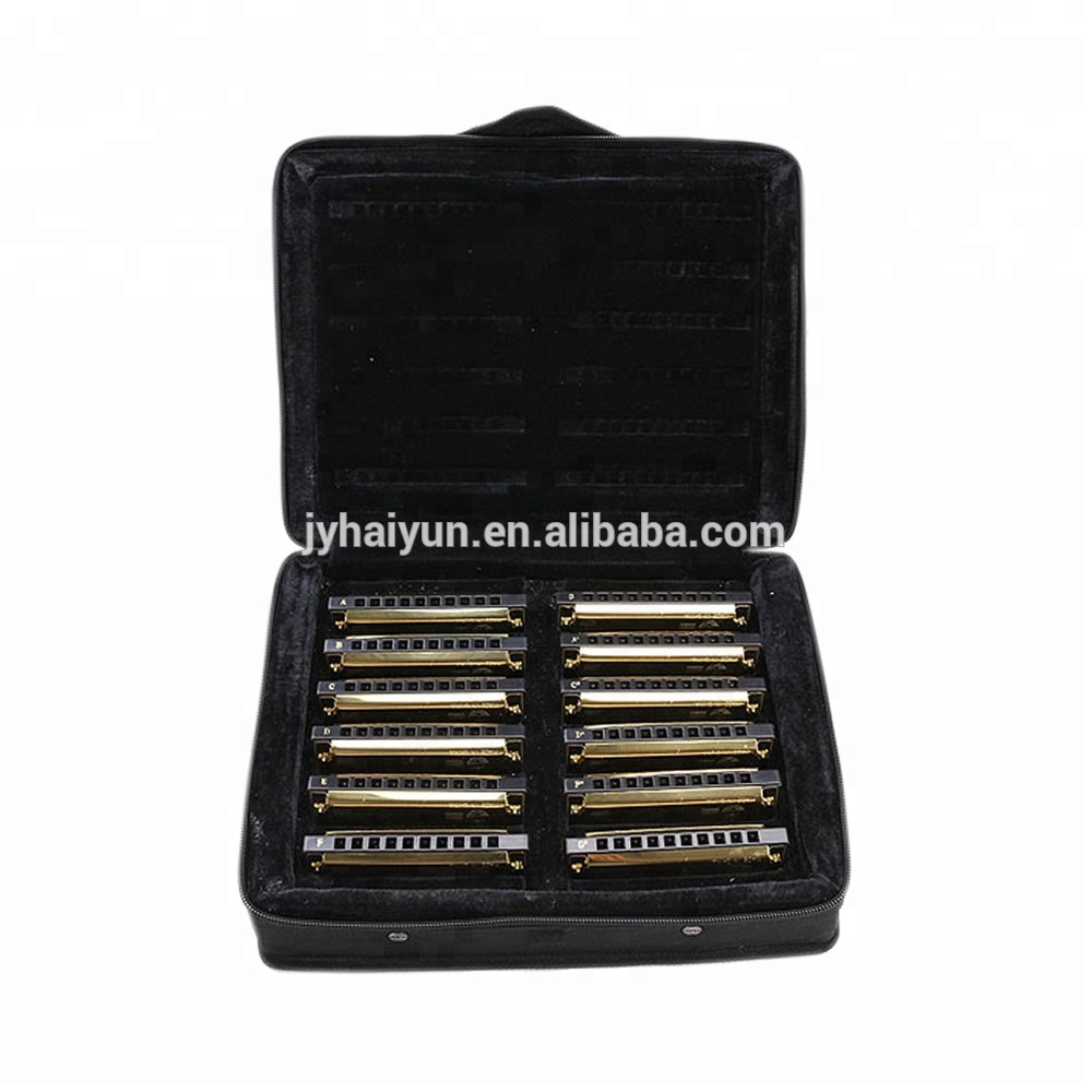 Professionele 10 gaten 12 keys Set Harmonica JH1020-12