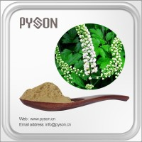 Triterpene Glycosides Black Cohosh Extract