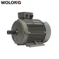 Wolong 4kw 4P AC Electric 3 Phase Induction Motor
