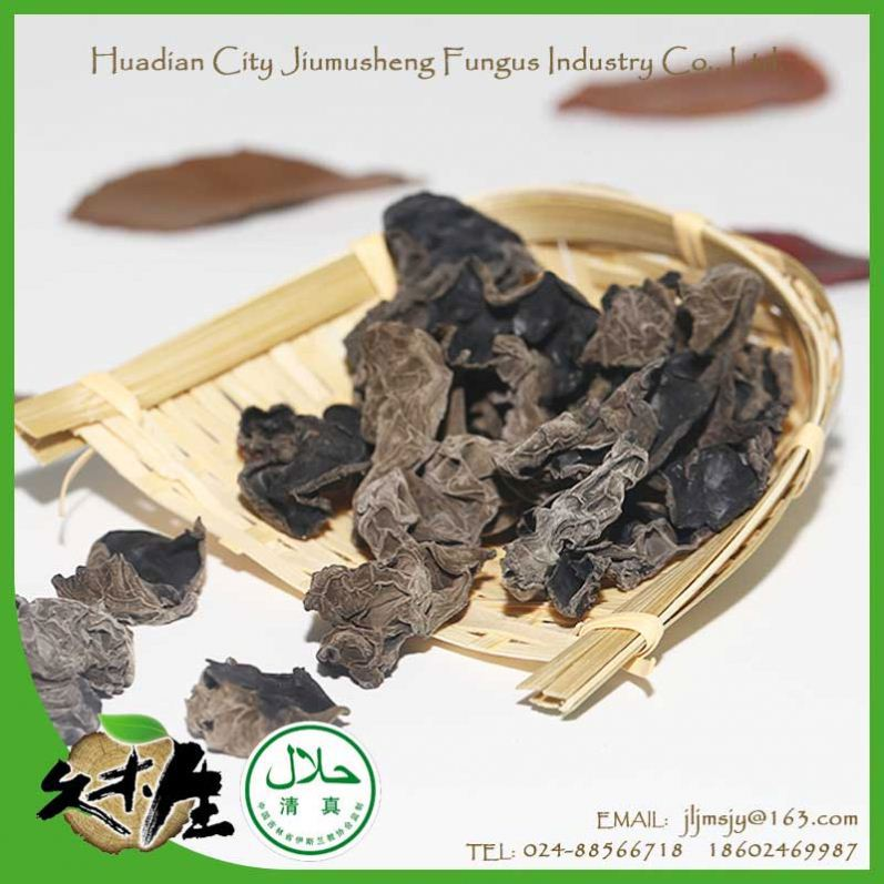 Best selling spring crop competitive price dried black fungus tree ear