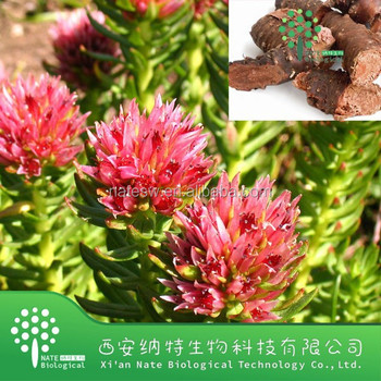 100% natural best selling rhodiola rosea extract/Rhodiola Rosea P.E/Rhodiola Rosea extract powder