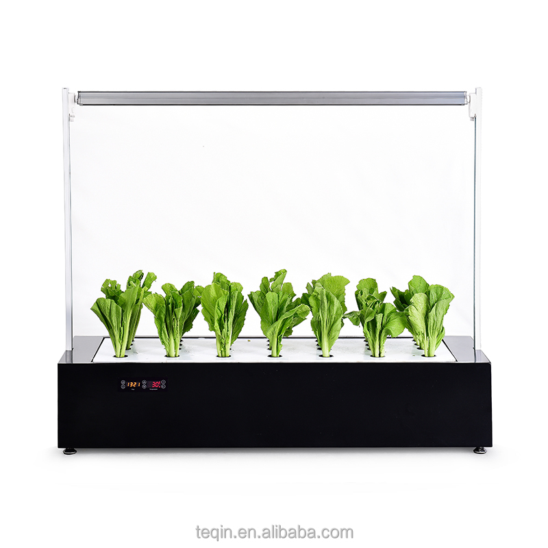 indoor flower and high plants hydroponics led grow system with custom led grow lights