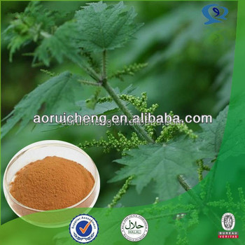 100% Natural Nettle Leaf Extract Powder