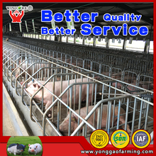 Used pig farm equipment sow breeding cages