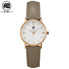 Top Brand Fashion Ladies Leather Female Quartz Women Casual clock watch
