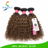 /product-detail/100-human-hair-ombre-color-human-hair-weft-human-hair-china-60236202769.html