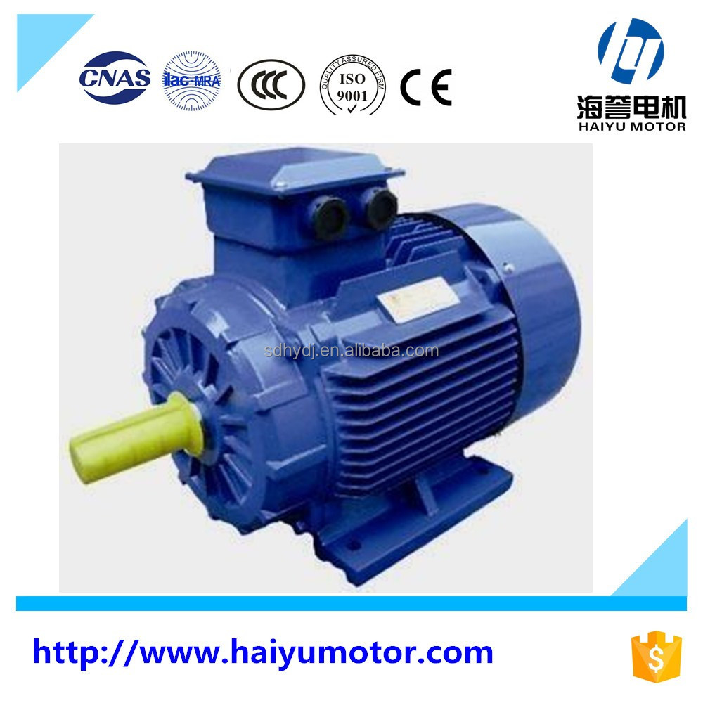 IEC standard 3 phase electric motor 100kw electric car motor