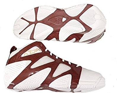 94dc3bb88704 Get Quotations · ATR Pump Torch NBA Basketball Shoes White Brown Size 18.0