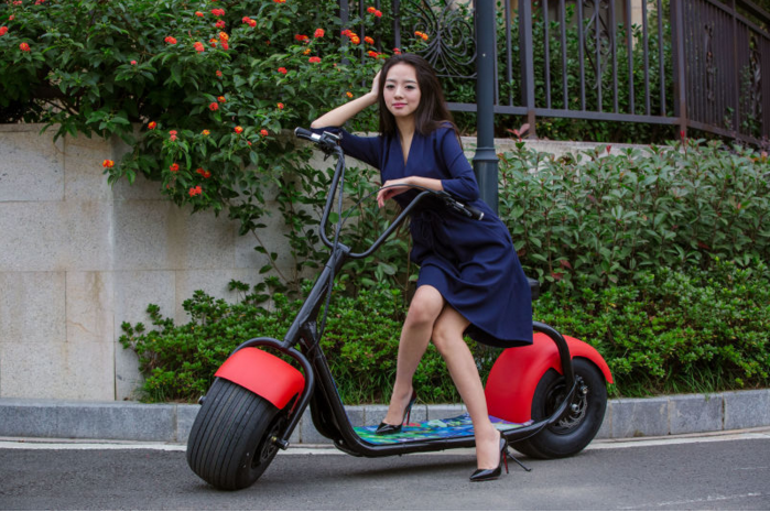 City Coco Harley Scooter Powerfull 800w Brushless Motor 18 Degree ...