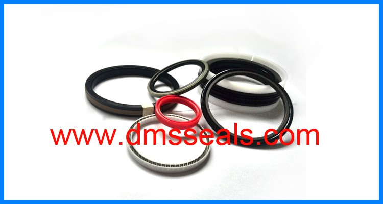 product-DMS Seal Manufacturer-img-3