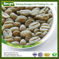 wholesale arabica green coffee bean