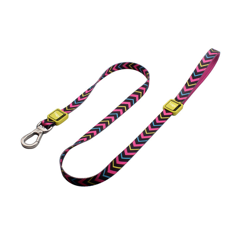 Sublimation Laser Engraved LOGO Custom Wholesale Strong Polyester Padded Dog Leash