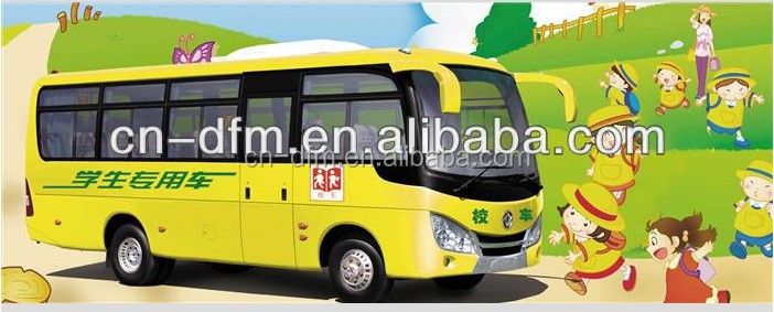 WIDELY USED SCHOOL BUS BUSES DIESEL & GAS
