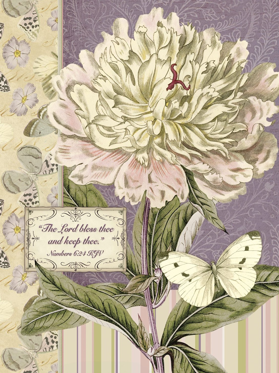 Buy legacy of faith boxed note cards with scripture clothesline legacy of faith boxed note cards with scripture peony and white butterfly kristyandbryce Image collections