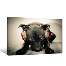 Lonely Dog Listen Music Canvas Print for Bedroom Dropship Canvas Wall Picture