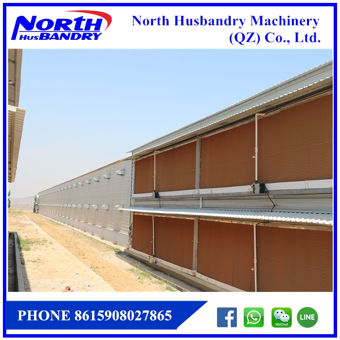 Prefabricated Poultry House for 10000 Chickens Steel Structural Chicken House|FarmKeys Poultry Ventilation