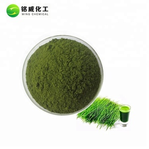 Wholesale Price Instant Barley Grass Powder Free Sample