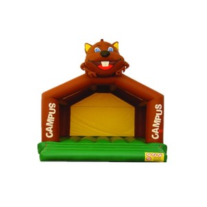 small Animal combo inflatable castle bouncers for kids