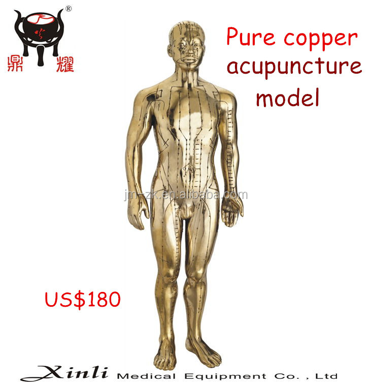 Acupuncture bronze human statue(50cm) for teaching and gift in hospital college