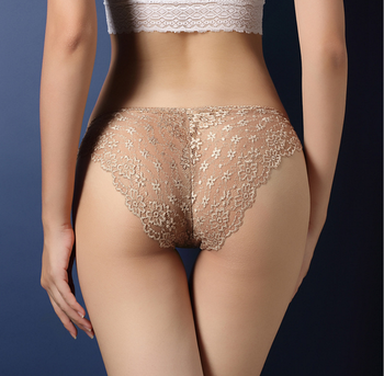 Women's see through Lace Knickers Lingerie Underwear Sexy Panties