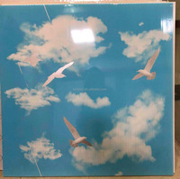 Suspended pvc ceiling blue sky pattern square shape 60X60 pvc panel for living room