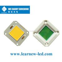 New COB Led Encapsulation 60W Led Module White Color 2000mA street light chip